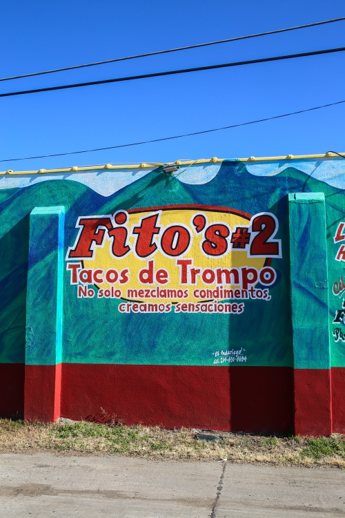 Fito's #2 Tacos de Trompo, photo by Catherine Downes